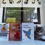 Ceres Yayınları Kitapları