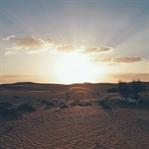 Dubai: Kultur erleben in der Wüste