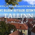 Estonya Tallinn Gezi Notları