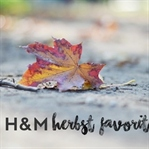 Meine Herbst Favoriten