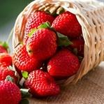 Sağlıklı Besinler ve Vücudumuza Olan Yararları