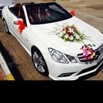Sevgiliye Hangi Araba Alınır?