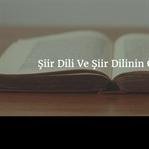 Şiir Dili Ve Şiir Dilinin Özellikleri