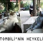 Tombili Kedi'nin Anısına Heykel Yaptılar