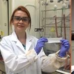 Türk Bilim İnsanından Büyük Başarı