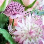 Blumen binden - Bloomy Sunday #3