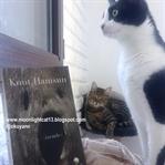 Okuma Halleri, Fotoğraflarla - Gizemler / Knut Ham