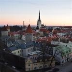Citytrip Tallinn: Auf Fotosafari in der Altstadt