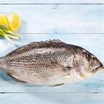Kış Mevsiminde Balık Tüketmek İçin 5 Neden