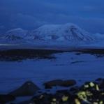 Spitsbergen – gekommen, um zu bleiben
