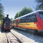 Mit dem Zug ins Lavendelfeld