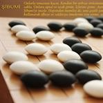 Şibumi: Kendini Bir Terbiye Örtüsünün Altına Sakla