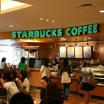 Starbucks Modeli ve Starbucks Nesli