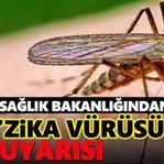 Zika Virüsü Tehlike Saçıyor! Hamileler Dikkat!
