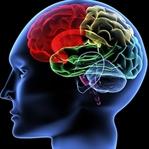 Beyin Mucizesi: Geçmişi Silmek Mümkün!