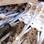 Bitmeyen Kilise Sagrada Familia için 4 İpucu!