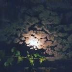 Parçalı Bulutlar