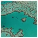 Reisebericht Whitsundays und Great Barrier Reef
