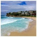 Sydney Travel Diary Part 1