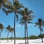 Travel Review: Miami