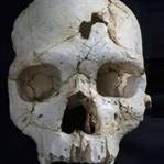 430 Bin Yıllık Kafatası Tarihin İlk Cinayeti mi?