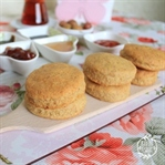 Biscuit, Mini Ekmekçikler