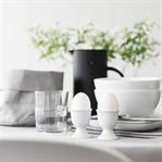 Pflanzengrün für den Tisch