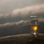 Viski Hakkında Sıkça Sorulan Sorular