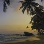 Das musst du in Sri Lanka sehen & erleben