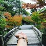 Hayatımıza Uygulanabilecek Şintoizm Öğretileri