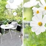 Sommerliche Balkon-Ideen