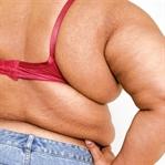 Yetersiz Beslenme ve Obezite ile Mücadele Edin!