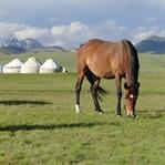 200 km mit dem Pferd durch Kirgistan