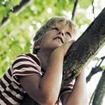 Çocuk ve Ağaç