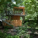 Ein Baumhaus in der Stadt