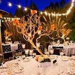 Mumlarla Düğün Masası Süslemeleri