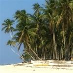 Warum du auf den Philippinen surfen solltest!