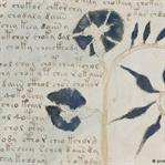 600 Yıl Önce Yazılan ve Sırrı Çözülemeyen Kitap