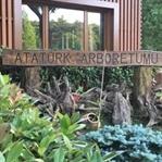 Atatürk Arboretumu Gezisi