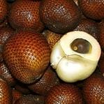 Yılan Meyvesi İle Sağlıklı Yaşayın