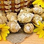 Bir Değişik Patates; Yer Elmasının Faydaları