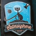 Catmosphere - Das Katzencafe in Chiang Mai