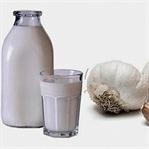 En Doğal Antibiyotik Sarımsaklı Süt