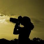 En İyi Mikro Fotoğraf Nasıl Çekilir?