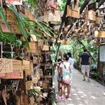 Kyūshū: Eine Reise in Japans tiefen Süden