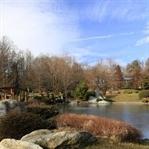Winter im Bonsai-Garten in Seeboden