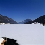 Winterwandern am Weissensee