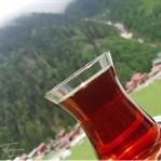 Ayder Yaylası ve En Güzel Oteli Villa de Pelit