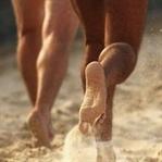 Çıplak ayakla koşmak sakatlanmayı önler