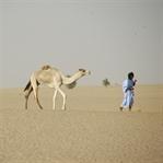 Einmal rund um Afrika – Teil 2 – Mauretanien